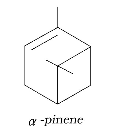 α-ピネン